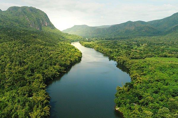 Save Greenest Amazon Forest